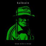 kaikozin_dd